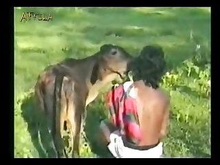 Animal dog and man xxx (part 2)