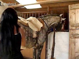 Horse Dick Futa