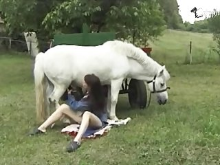 Girl Horse Xx Video